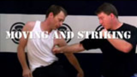 Systema Volume 1: Moving and Striking